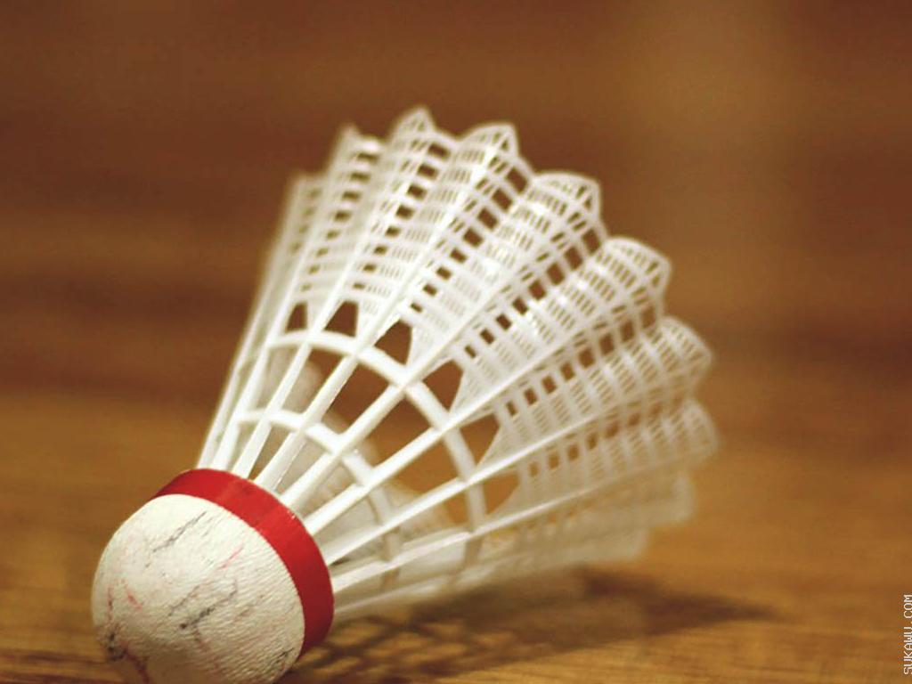 Kelas Badminton Profesional