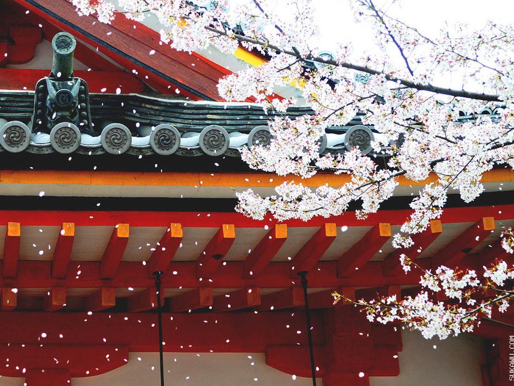 Kursus Bahasa Jepang oleh Yudisa Nihongo Kyoushitsu